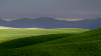 Foothills of the Palouse