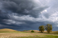 Gathering Storm at the Palouse