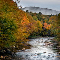 Colorful Creek - White Mountains